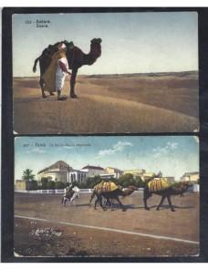 Dos tarjetas postales ilustradas Túnez escenas dromedarios Otros Mundial - 1900 a 1930.